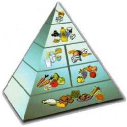 Nutricion celular Herbalife